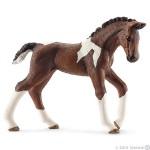 Schleich - Trakehner Foal