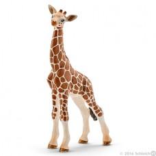 Schleich - Giraffe Calf