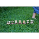 Personalised Wooden Alphabet Name Trains