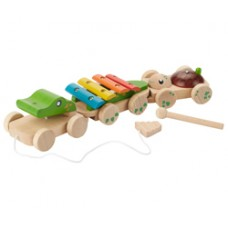 EverEarth - Educational Pull Along Musical Crocodile